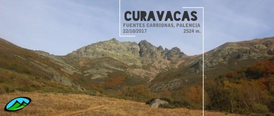 MendiaK: Curavacas (La Montaña Salvaje de Palencia)