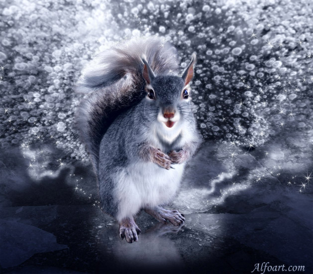 How funny squirrel became a the snow queen in Adobe Photoshop