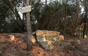 bosc-de-les-forques-32