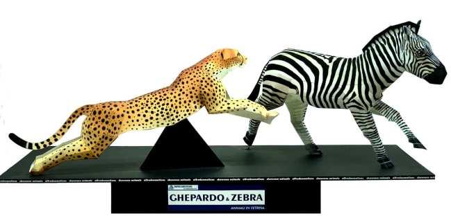 Ghepardo & Zebra