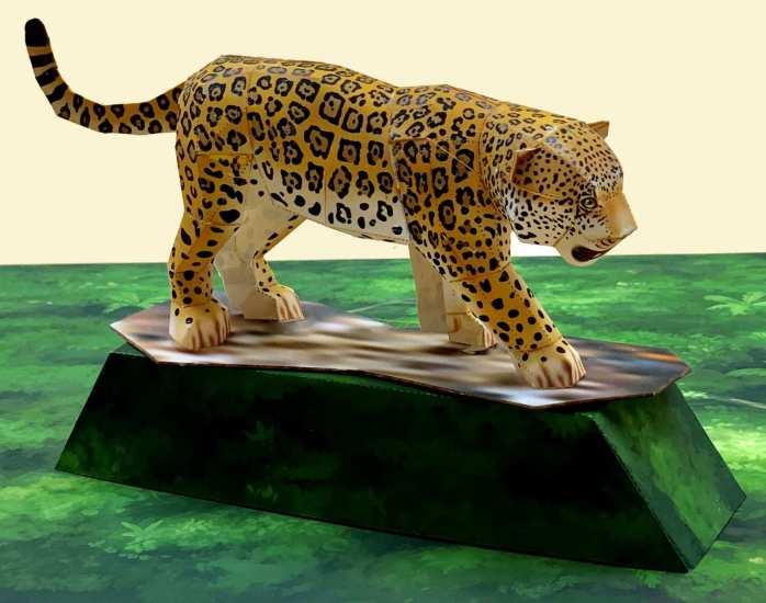 Giaguaro - Americhe