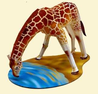 Giraffa che beve - Africa