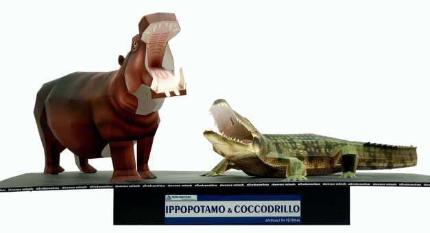Ippopotamo e Coccodrillo