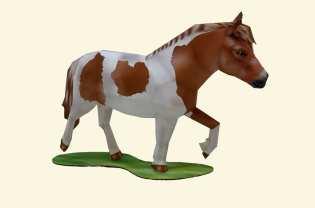 Pony falabella - Domestici