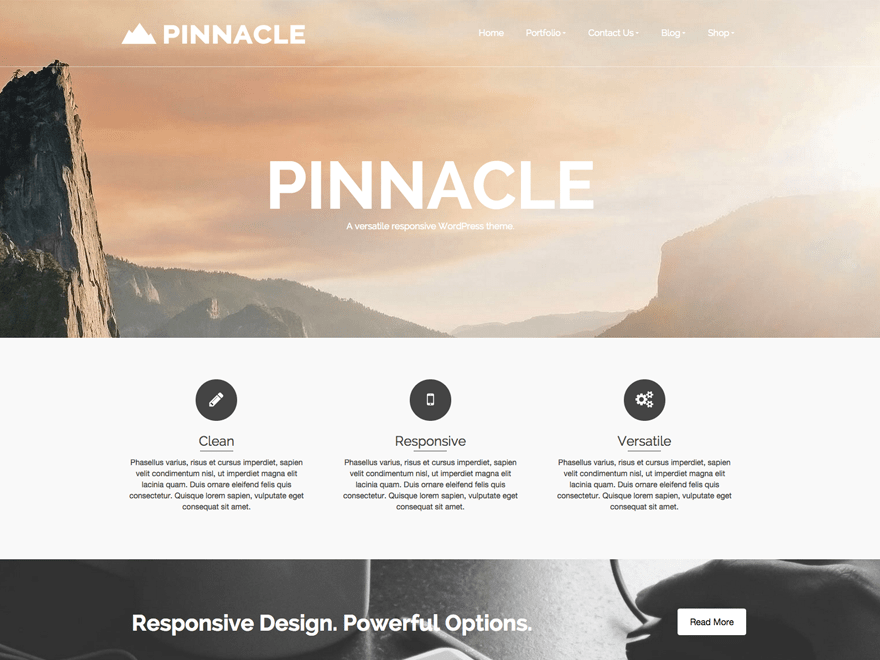 TEMA PINNACLE