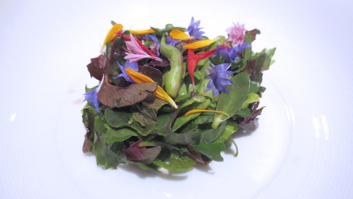Insalata alle erbe del Maso Aspinger con sedano rapa cotto al sale