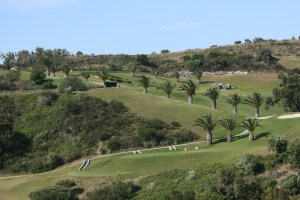 Golf resort Parque de Floresta