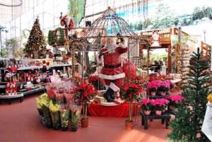 Shopping in December