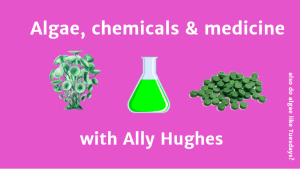 algae, chemicals and medicine. interview with ally hughes