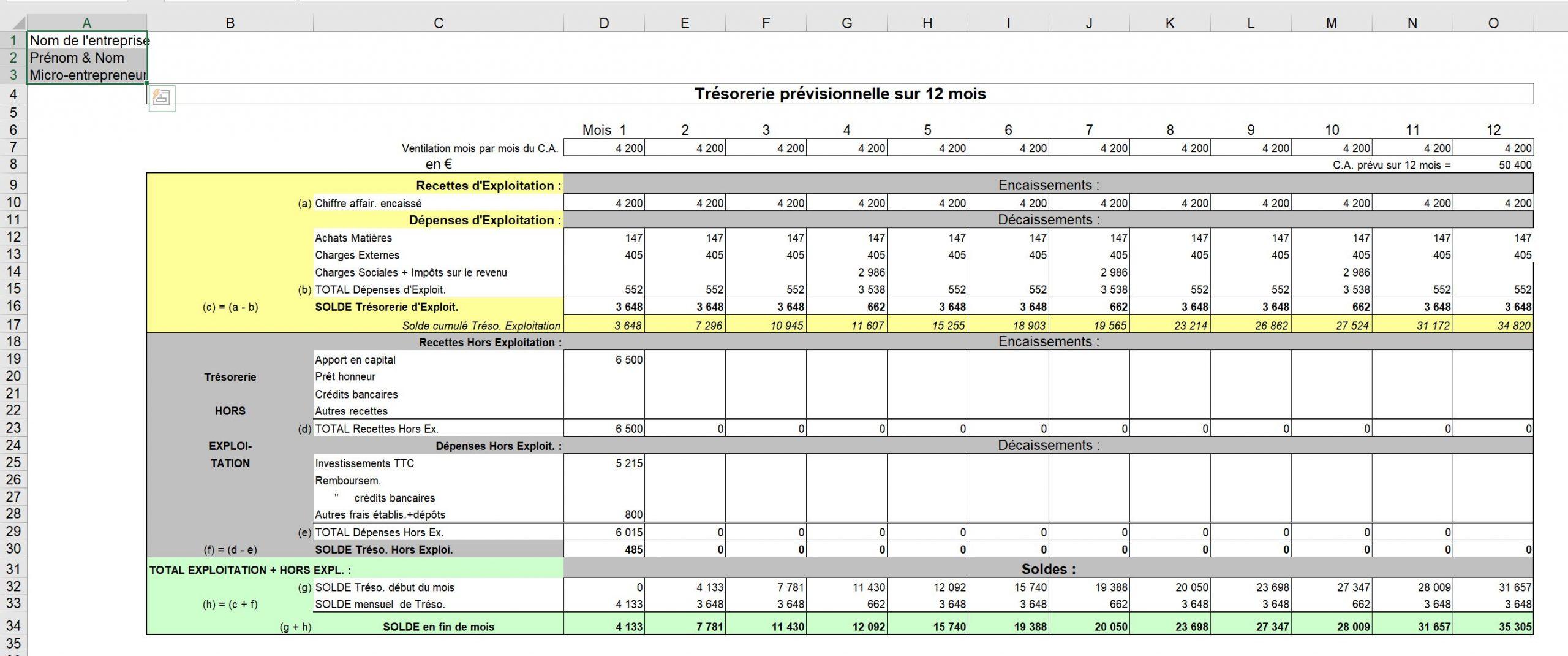 Exemple Trésorerie prévisionnelle sur 12 mois changement de statut commerçant