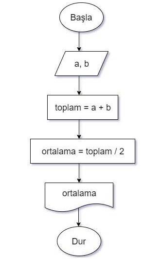 Algoritma Örnekleri -1