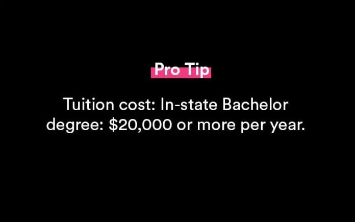 undergraduate vs graduate