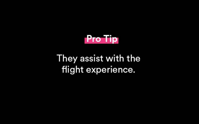 what does a flight attendant do