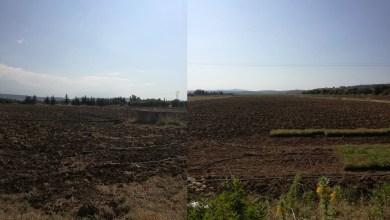 Photo of سجنان: انطلاق استغلال المنطقة السقوية بمساحة تقدر بـ 800 هكتار