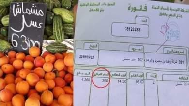 Photo of المشماش يتلف لکي تبقی الأسعار ملتهبة