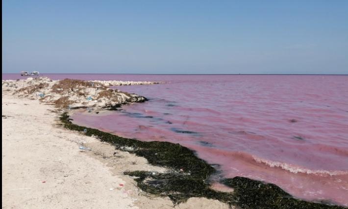 صفاقس: وقفة تضامنية مع البحارة المتضررين