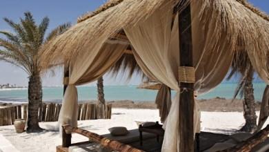 Photo of عين على السياحة وجزيرة جربة من أهم الوجهات العالمية