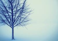 Faidah Ushul–01: Kehilangan Pahala = Dosa???