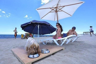 Playa de Aguamarga. Dog-friendly beach