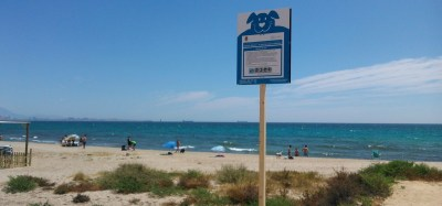 doggy beach alicante 2016-3