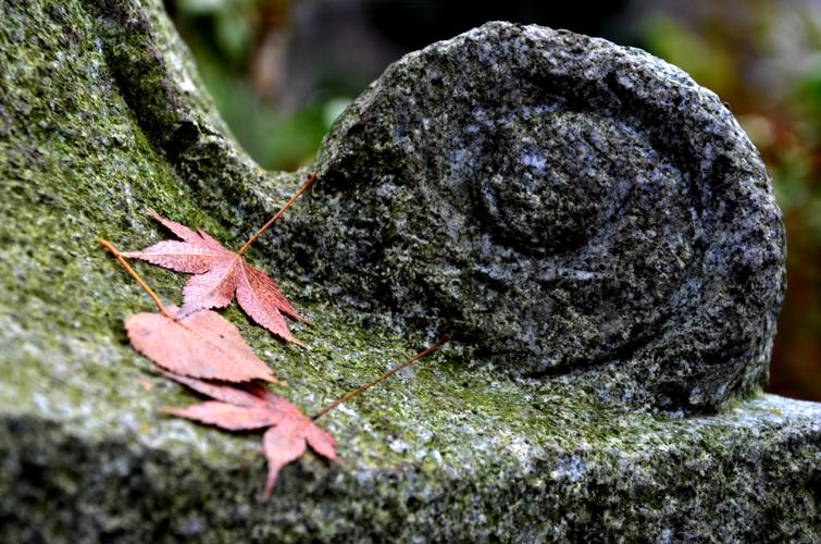 Kringel mit Blättern