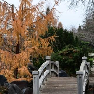 EGA Erfurt-Japanischer Garten