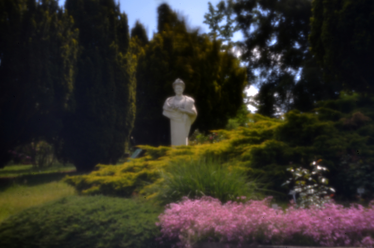 Rosarium Sangerhausen - Hermenbüste [PinHoleLens]