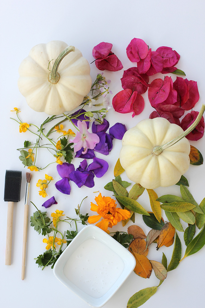 Decoupage Foraged Flower Pumpkins   alice & lois