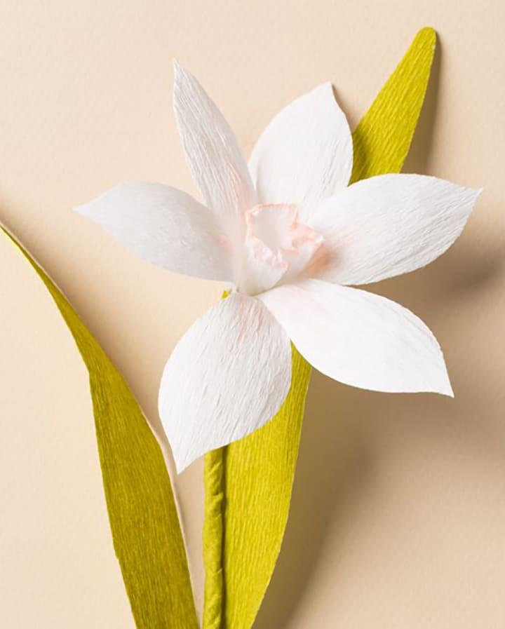 DIY paper narcissus flower