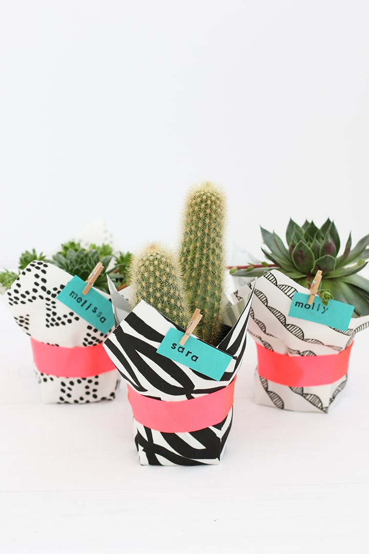 DIY Fabric Wrapped Succulent | alice & lois