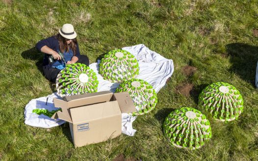 Pappus Lactés - Alice et David Bertizzolo - Festival Horizon Arts natures en Sancy - Lac de Bourdouze - Massif du Sancy - Puy de Dome - France - Juin 2015 - Crédit photo Tiphaine Buccino - demi structure à monter