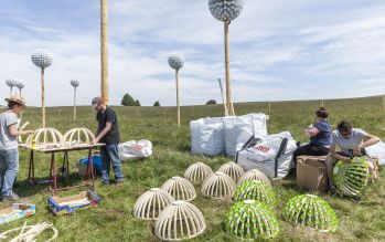 Pappus Lactés - Alice et David Bertizzolo - Festival Horizon Arts natures en Sancy - Lac de Bourdouze - Massif du Sancy - Puy de Dome - France - Juin 2015 - Crédit photo Tiphaine Buccino - pleins pappus à monter