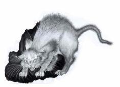 Chat hérissé /Alice Heit