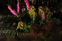 Capture d_écran 2012-10-29 à 14.23.47-alice heit-