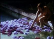 """""""Les eaux profondes"""""""