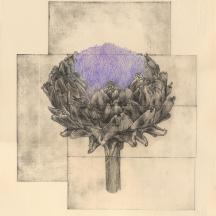 """""""le lotus du trégor"""""""
