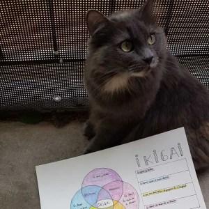 Ikigaï et Pitou le chat