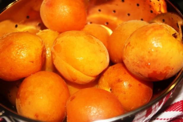 Sorbet Abricots framboises