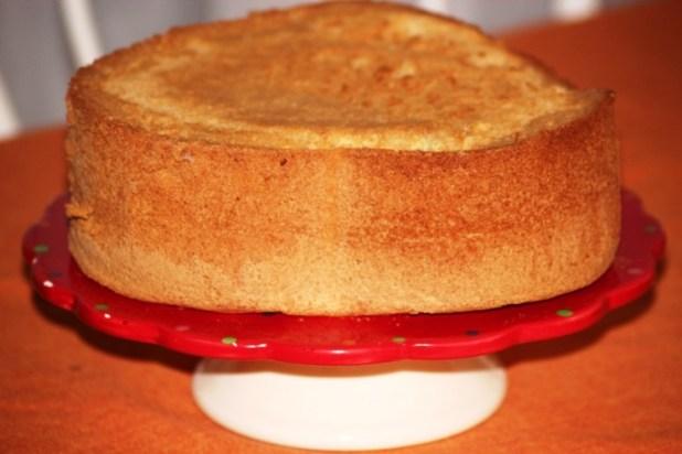 american sponge cake (2)
