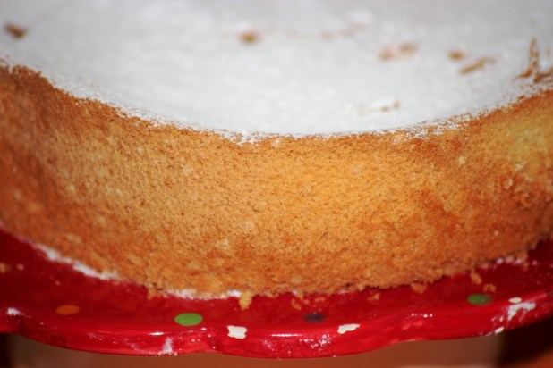 l'american sponge cake (9)