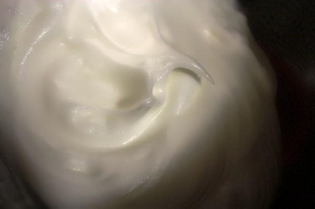 ricotta cheesecake (4)