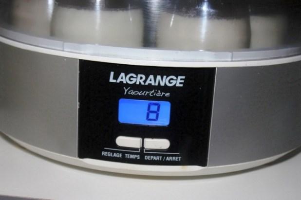 yaourt à la vanille et au rhum (4)