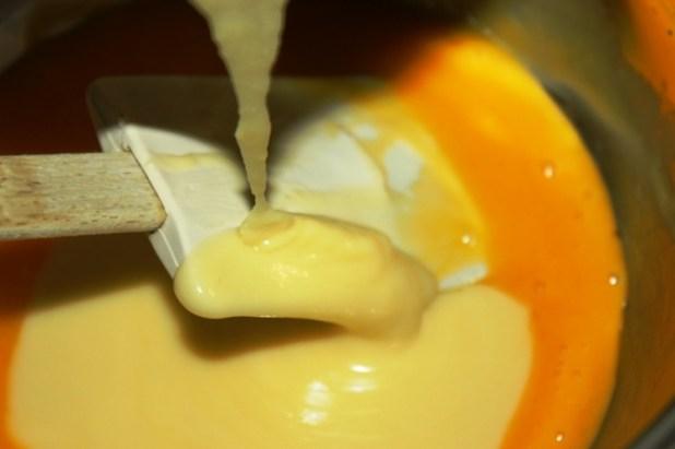 gâteau au chocolat blanc et chocolat au lait (11)