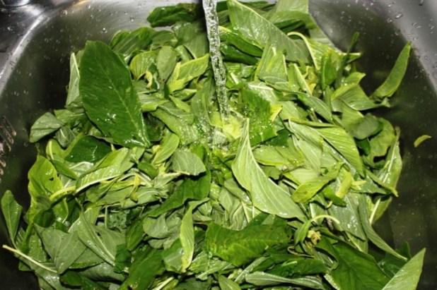 folong sauce pistache