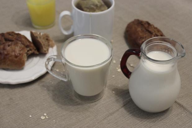 lait d'avoine maison