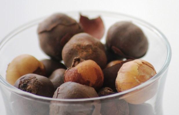 L'olum, Bobimbi, Country-Onions, Rondelles, Huyomi: (écorce et fruits de l'arbre à ail)
