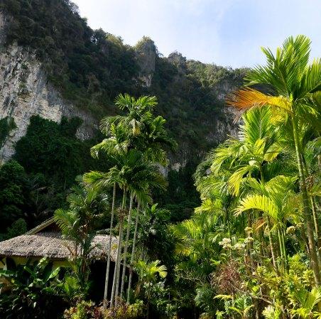 Vipa-tropical-resort