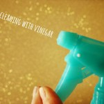 Cleaning With Vinegar!