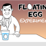 Kids Science Experiments: Make an Egg Float