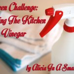 A Green Challenge: Cleaning The Kitchen With Vinegar